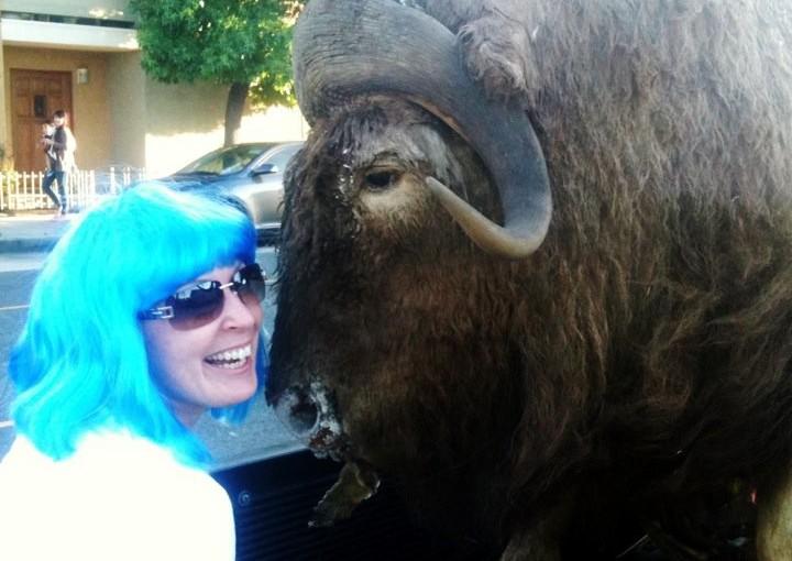 blue hair and a buffalo